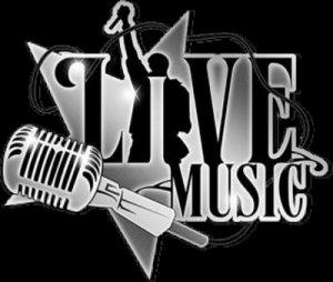 Live Muziek Cafe Zevenwouden
