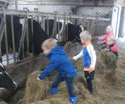 Rondleiding IJsboerderij